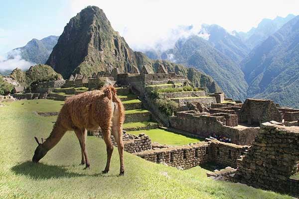 Individuele rondreis Peru ervaring met voordeel
